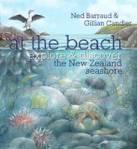 cv_at_the_beach_2