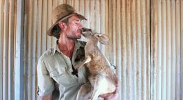kangaroo Dundee