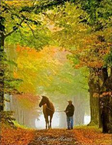 man walking autumn horse